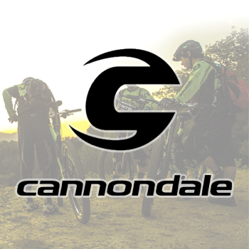 Cannondale Brand Carrier